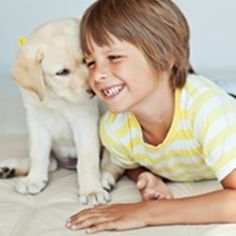 Children get more satisfaction from relationships with their pets than with their brothers or sisters, according to new research. Children also appear to get on even better with their animal companions than with siblings. Pet Sitting, Animal Facts, Character Development, Dog Walking, Siblings, Pet Care, Research, Homeschool, Best Friends