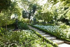 The estate gardens have been beautifully designed by award winning horticulturist Keith Kirsten to bloom 356 days a year African Lily, Spa Reception, Agapanthus, Exotic Plants, Contemporary Landscape, Botanical Gardens, Vineyard, Paradise, Tours