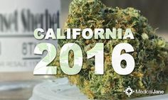 The March Toward Marijuana Legalization in California: 2016 and Beyond