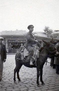 Istanbul, Elephant, Horses, Animals, Art, Art Background, Animales, Animaux, Kunst