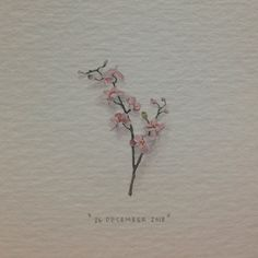 Lorraine Loots,  Orchid. No 360 of 365paintingsforants