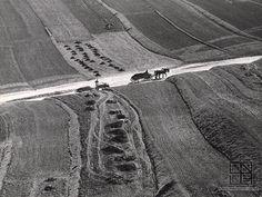 Martin Martinček: Poľná cesta:1955 - 1975 Black And White, Photography, Folk Art, Grass, Nostalgia, Places, Author, Lens, Photograph