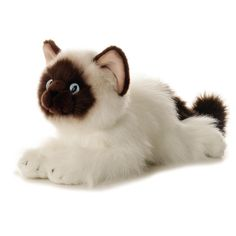 Bella, our plush Birman cat by Aurora, is a realistic stuffed version of this beautiful feline. Measuring 12 inches long, our stuffed Birman cat is made of a silky cream colored plush. for ages 3 and up. Siamese Kittens, Cats And Kittens, Ragdoll Cats, Mini Puppies, Gato Grande, Stuffed Animal Cat, Stuffed Animals, Stuffed Toy, Hate Cats