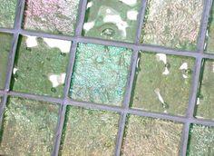 Lightstreams Glass Tile   Renaissance Collection Citron Green ...