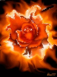 Romancing the Rose GIF. By Artist Decent Image Scraps. Flowers Gif, All Flowers, Pretty Flowers, Beautiful Gif, Beautiful Roses, Animiertes Gif, Gif Photo, Glitter Graphics, Cool Animations