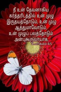 Heart soul and might! With all that's in u LOVE the Lord! Biblical Quotes, Religious Quotes, Spiritual Quotes, Bible Quotes, Bible Words Images, Tamil Bible Words, Namaste, Identity In Christ, Religion