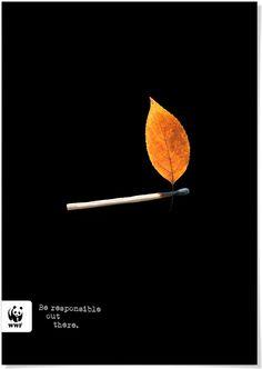 Maxwell A. Davis : WWF Poster | Sumally