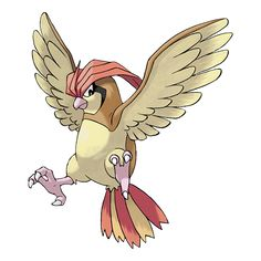 Pidgeotto #017 normal, flying