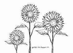 Contoh Gambar Mewarnai Gambar Bunga Matahari