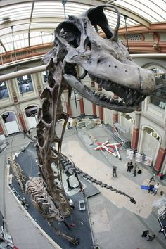 """Go to a real museum with real dinosaur bones"" #summerbucketlist #happyfamilysummer"