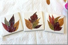 Leaf Coasters - This could be a fun project even for older kids and adults, and they would make a great gift idea.
