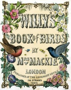 bumble button: A Legacy Sale- Buttons - Free 1860 bird prints to ...