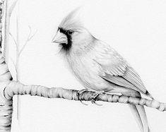 Aves dibujo lápiz dibujo Giclee Fine Art Print por ABitofWhimsyArt