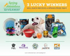 Spring Into Adventure Giveaway