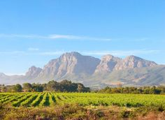 the Du Toitskloof mountain range near Paarl, Western Cape, South Africa. How To Speak French, Travel Companies, Travel Planner, Rest Of The World, Mountain Range, The Republic, Cape Town, Serenity, South Africa
