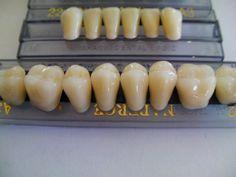 unique halloween props | Details zu HALLOWEEN HORROR PROP - Resin Teeth for Prop Building!