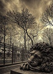 The Lion at the foot of Herman Wedel-Jarlsberg monument, in Dronningeberget Park, Oslo, Norway.   Wonder... what is the material... stone, bronze, etc?  (unknown photographer)