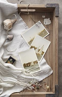 Still Life * Prop Style * Sea Shells * Nostalgia * Vintage Photos * Vintage Necklace * Rustic * Prop Stylist: Josephine Castellano JosCast.com Photographer: Amanda James Photo