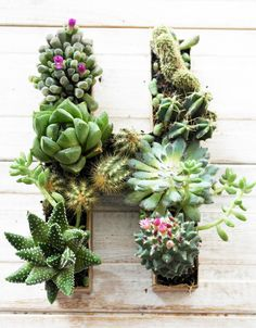 adorable blog with cute diy ideas and great recipes