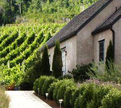 Nova Scotia wine country, who knew? Annapolis Valley, East Coast Road Trip, Wine Tourism, Wine Vineyards, Atlantic Canada, In Vino Veritas, Italian Wine, France, New Brunswick