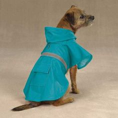 Guardian Gear Brite Rain Jacket for Pets, XX-Large, Bluebird >>> Click on the image for additional details. (This is an affiliate link and I receive a commission for the sales)