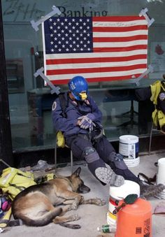 Rescue dog from 9/11.