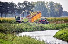 Harvest, Rijsbergen, The Netherlands Professional Photographer, Netherlands, Harvest, Photography, The Nederlands, The Netherlands, Photograph, Fotografie, Photoshoot
