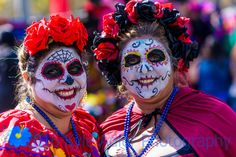 LR-3211 Photography Sites, Professional Photography, Travel Photographer, Halloween Face Makeup, Wildlife, Culture, Gallery, Photos, Image