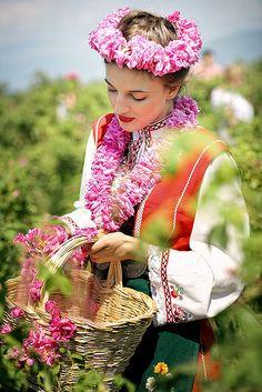 Valley of the Bulgarian Roses - Kazanlak -Bulgaria