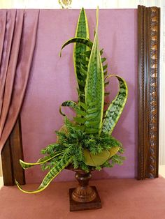 Beautiful use of Sansevieria in design at Newport Flower Show 2014 - Gardening Aisle Real plants Ikebana Arrangements, Tropical Flower Arrangements, Creative Flower Arrangements, Ikebana Flower Arrangement, Church Flower Arrangements, Beautiful Flower Arrangements, Tropical Flowers, Fresh Flowers, Silk Flowers