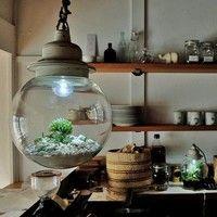 『ガラスの中の小宇宙』村瀬貴昭さんのRe:planter(リ・プランター)が凄い!