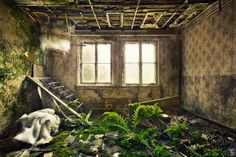forgotten little hotel in east germany, the nature is already growing inside an old bedroom