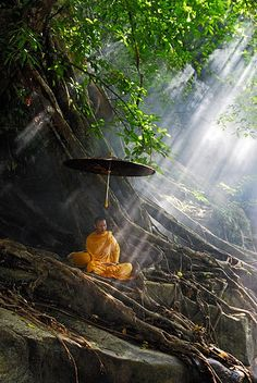 Thai Monk is in natural meditation