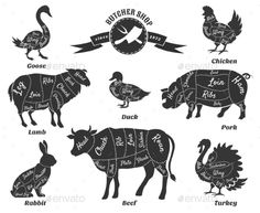 Buy Diagrams for Butcher Shop by on GraphicRiver. Diagrams for butcher shop. Animal silhouette, beef and cow, turkey and goose, pork and sheep. Pork Beef, Ribs, Sheep Vector, Butcher Shop, Animal Silhouette, Silhouette Cameo, Creative Sketches, Pencil Illustration, Cattle