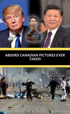 Absurd Canadian Pictures Ever Taken World 2020, Sunny Days, Funny Memes, Lovers, Facts, Nature, Pictures, Top, Fashion