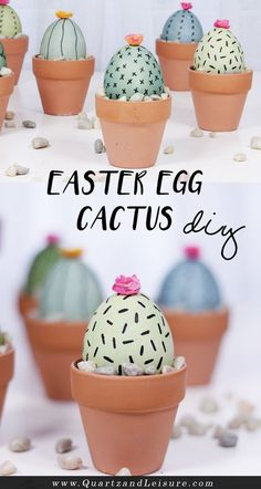 Easter Egg Cactus DIY - Quartz & Leisure