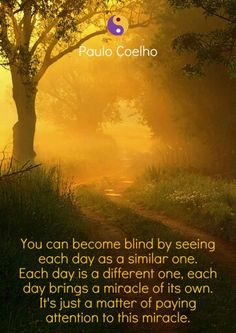 You can become blind by seeing each day as a similar one.  Each day is a different one.