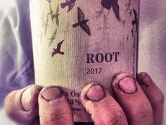 Wein aus Vorarlberg kann das gut sein? UND OB,... Passport, Wine