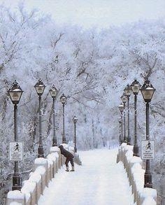 Winter Bridge, Peter K. Mann