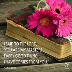 I said to the Lord, 'You are my master! Every good thing I have comes from you.' - Psalm 16:2 #NLT #Bible
