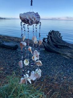 Seashell Wind Chime in Black and Silver Seashell wind chime made with assorted shells collected from the shores of Vancouver Island along with shells we found beach combing on a trip to Sanibel Island in Florida.