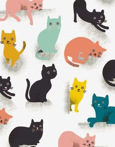 print & pattern blog: SPRING 2015 - noi publishing cat wrapping paper