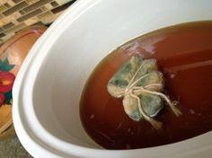 cannabis honey infusion recipe