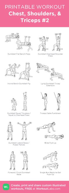 Chest, Shoulders, & Triceps #2