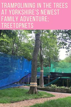Trampling in tree tops. It's a brilliant place to have active, family fun, all together in the great outdoors in a new and exciting way!