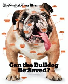 This Nov 27, 2011 New York Times Magazine print cover is a Medal Finalists in the Society of Publication Designers Annual Design Competition.