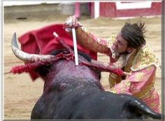 Mrs. Aurélie Filippetti, Minister of Culture: CORRIDA TO REMOVE FROM THE INTANGIBLE HERITAGE OF FRENCH CULTURE