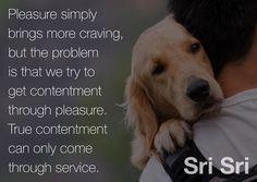 """#Pleasure simply brings more craving, but the #problem is that we try to get #contentment through pleasure. #True contentment can only come through #service."" #srisri Ravi Shankar - Sri Sri Ravi Shankar"