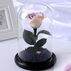 Beauty and The Beast Preserved Flowers are real fresh flowers that does not wither for years. No more Mosquitoes or Bugs. No Watering is Required. Lasts up to 10 years. High Quality. Imported from Ecuador and Japan. - Contact Us - Ship Worldwide - www.Dreamt.Today #garden #dreamttoday #singapore #giftideas #doorgift #design #preservedflowers #preservedflower #love #nice #pretty #flowers #flowerstagram #sgflowers #interiordesign #bouquet #flowersgift #preservedrose #preservedroses #weddings…