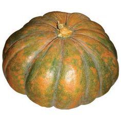 green pumpkin - Bing images